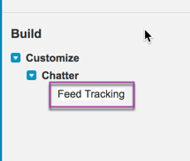 Chatter Feed Tracking