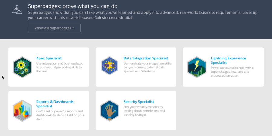 Salesforce Trailhead Superbadges